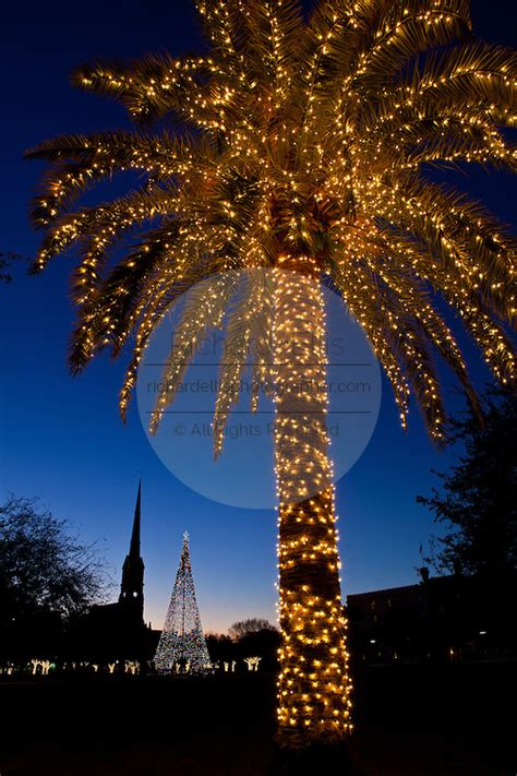 charleston holiday lights richard ellis photography