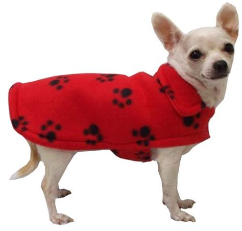 small puppy clothes pin small clothes area on