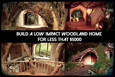 5000 dollar cabin build a low impact woodland home for less that 5000