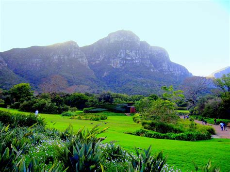 Kirstenbosch National Botanical Gardens South Africa Cape Peninsula Kirstenbosch National Botani Flickr