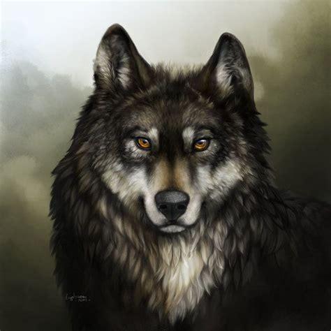 imagenes de lobos en 4k imagens mais lindas do mundo de lobo pesquisa google