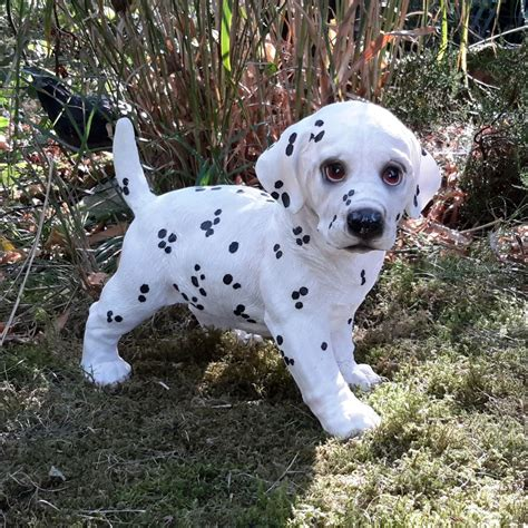 garten ideen hunde dalmatiner welpe stehend gartenfigur gartendeko hund hunde