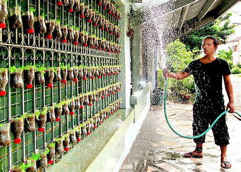 aquaponic vertical garden philippines garden ftempo