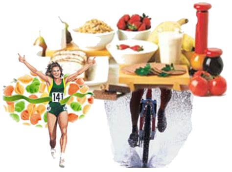 Sports Nutrition Free Talk Maximizing Athletic Performance Through