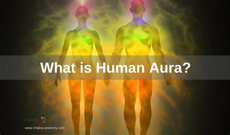 human aura human aura