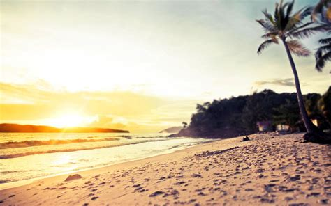 wallpaper tumblr beach 50 amazing beach wallpapers free to download