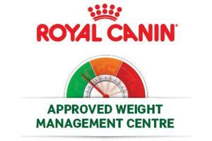 weight management walsall 387 vets vet in cannock walsall great wyrley