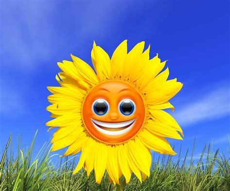 margarita emoticon illustration gratuite tournesol smiley jaune 201 t 233