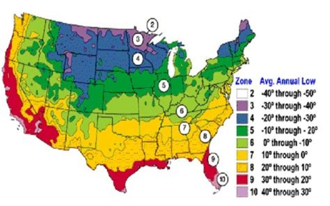 use this plant zone chart to when to plant your garden - Gardening Zone 10