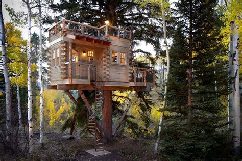 Livable Tree House Plans Rustic Treehouse Cabin In Colorado Hiconsumption