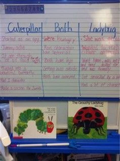 compare and contrast picture books 1000 images about compare and contrast on