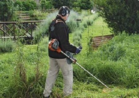 manutenzione giardini torino giardino express manutenzione giardini a torino