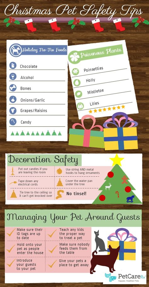 decorating safety tips 14 tips for a pet an infographic
