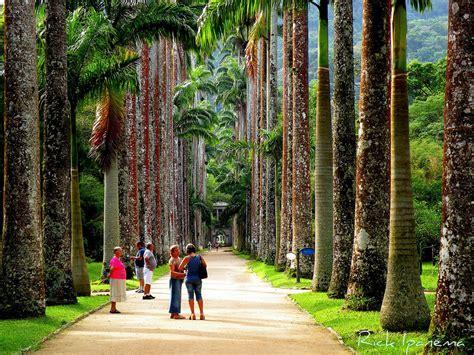 Um Botanical Gardens Jardim Bot 226 Nico De Janeiro Um Dos Dez Mais Important Flickr
