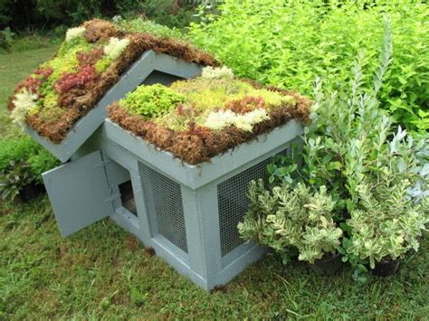 Backyard Chickens Omaha Green Roofed Chicken Pen Backyard Chickens