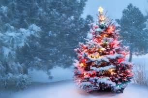 außenbeleuchtung garten au 223 enbeleuchtung weihnachtsbaum bestseller shop