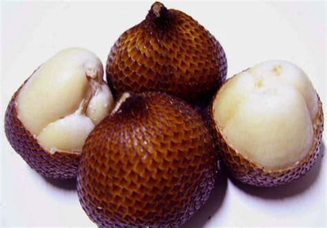 Wajah Fruit manfaat buah salak salah satunya untuk mencerahkan kulit
