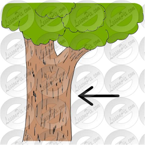 tree bark clipart clipart suggest