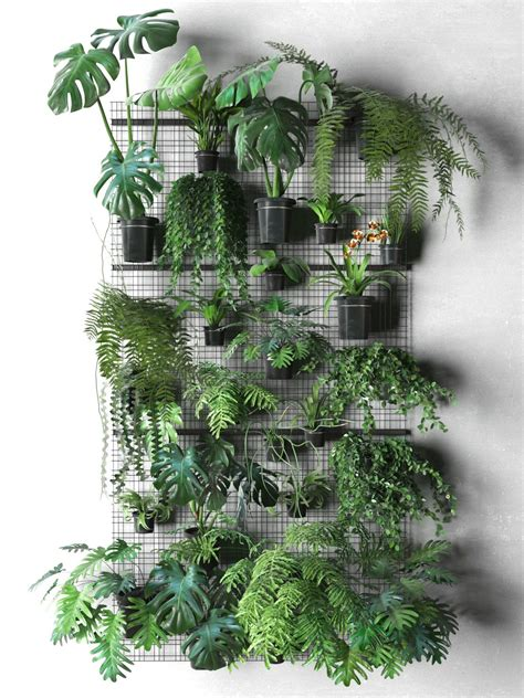 image result  wall plants  images indoor plant