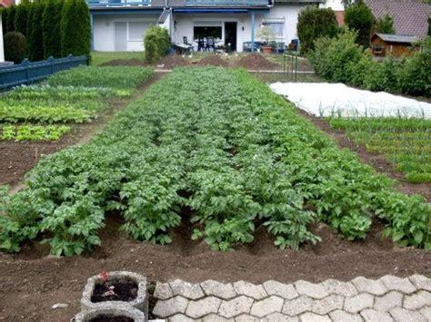 garten bepflanzen wann garten anders wann mit der planung f 252 r den gem 252 segarten