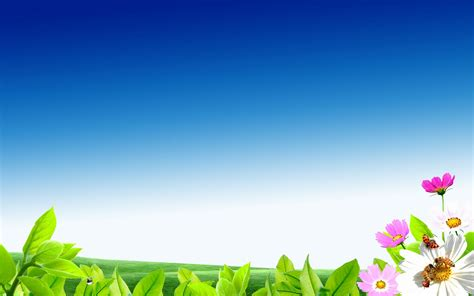 Digital art   green field with flowers and blue sky