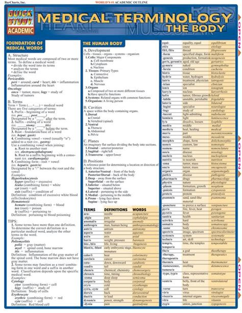 medical terms medical terminology the body medical terminology