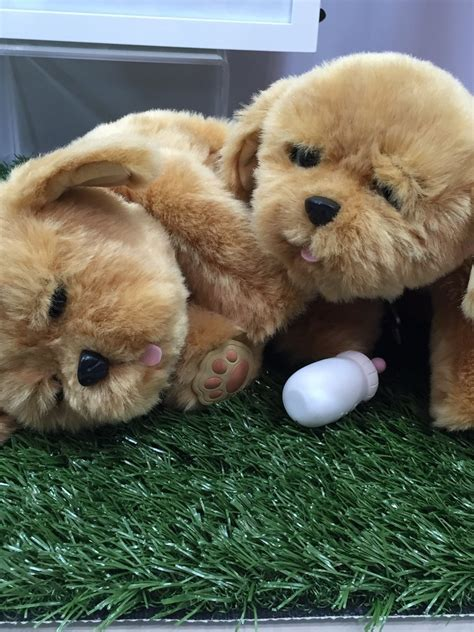 live pets puppy live pets lil puppy new toys from fair 2016 popsugar photo 126
