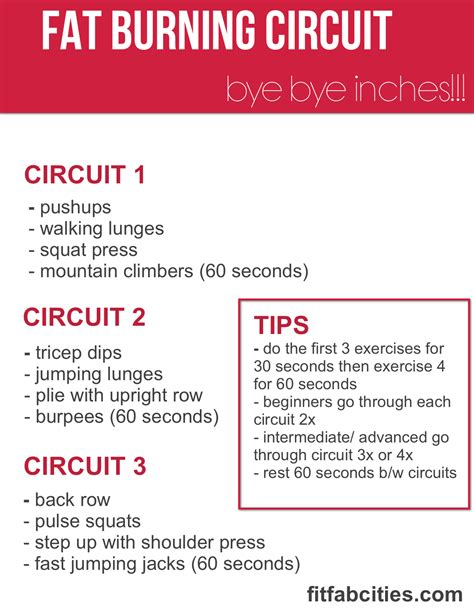 try to do this burning circuit from fab fit cities 2