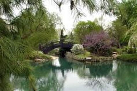 Japanese Stroll Garden Springfield Mo by Top 30 Things To Do In Springfield Mo Springfield