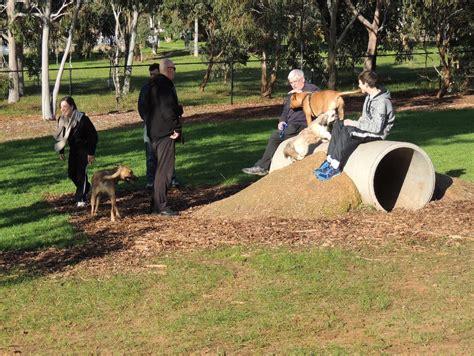 puppy playground equipment cc reserve park playground adelaide