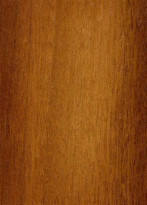 white meranti  wood  lumber identification