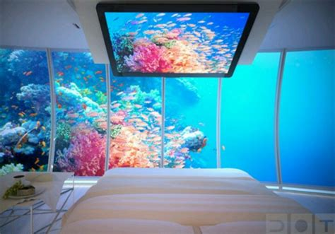 bedroom in aquarium aquarium bedroom awesome things pinterest