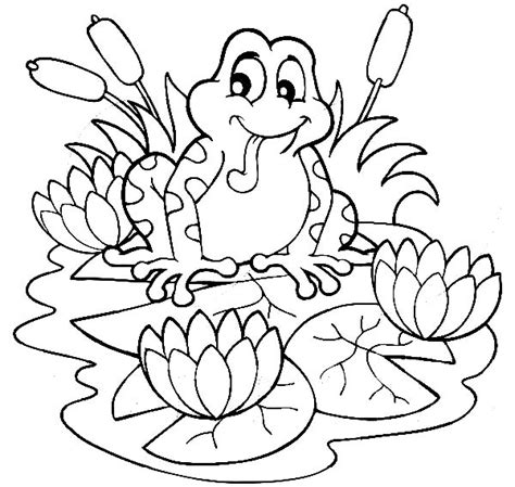 coloring page frog and lily pad frog sitting on lilypads and lotus flower coloring pages