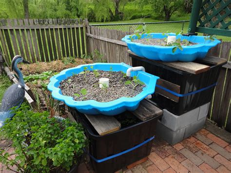 backyard aquaponics system design aquaponics small baby pool aquaponics system