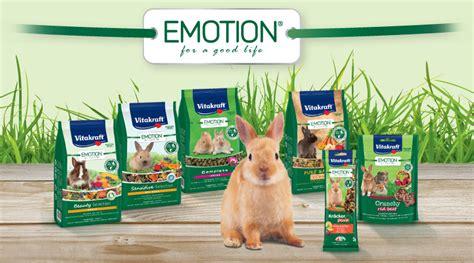 alimenti per conigli alimenti base conigli