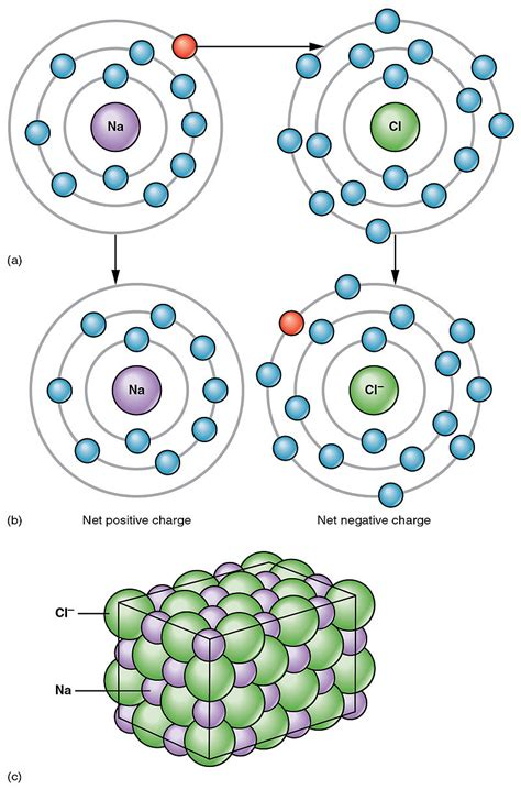 Difference Between Ionic And difference between covalent and ionic bonds