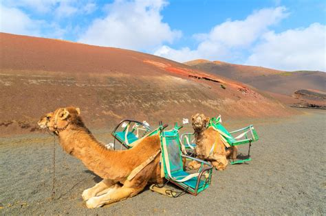 lanzarote travel guide beaches water sports