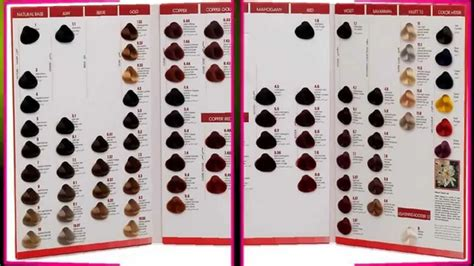 2014 goldwell topchic color chart goldwell topchic color chart 2014 goldwell topchic color