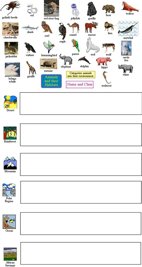 Animal Classification Worksheet by Free Habitats Worksheets Coloring Pages