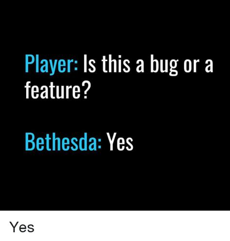 Or A Player Is This A Bug Or A Feature Bethesda Yes Yes Meme
