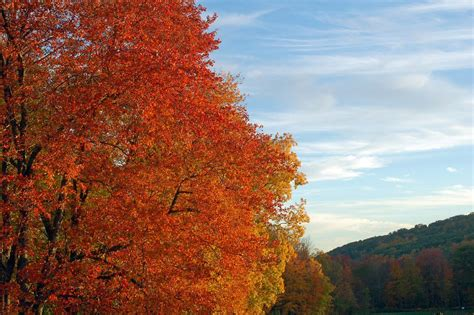 fall colors 2017 fall foliage in new england 2017