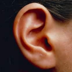 inner ear disorders linked to hyperactivity news