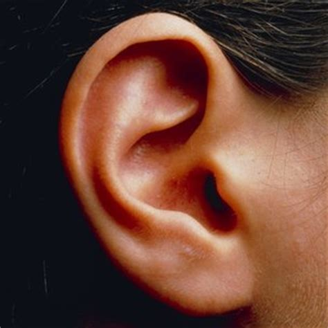 ear problems inner ear disorders linked to hyperactivity news