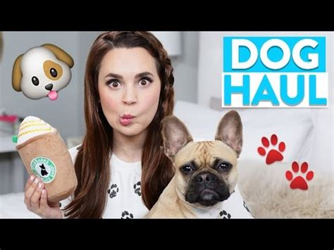 puppy haul guardians of the galaxy cassette cookies nerdy nummies funnycat tv
