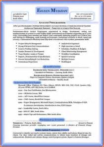 Curriculum Vitae Resume Format by 6 Professional Curriculum Vitae Format Sle Budget Template Letter