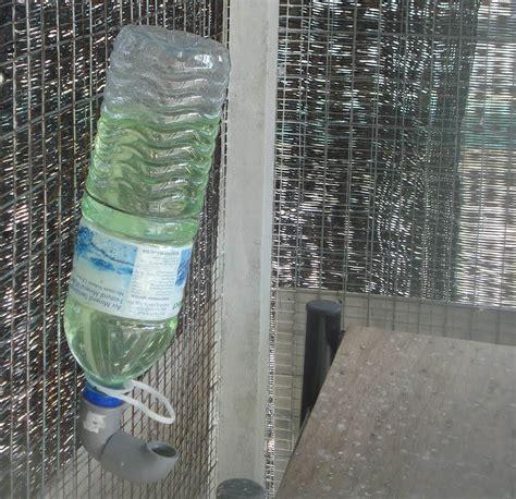 Tempat Makan Minum Burung Otomatis membuat tempat minum dari botol bekas om kicau