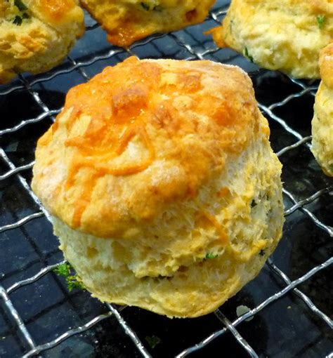 cheese scones  cooking bug