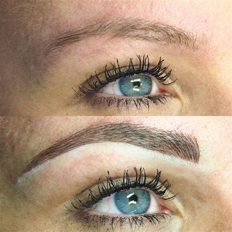 feather tattoo melbourne 111 best images about cmh tayla made wow brows feather
