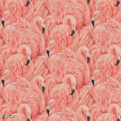 Bathroom Powder Room Ideas 25 best ideas about flamingo wallpaper on pinterest