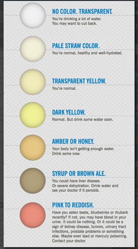 what color is healthy urine what color is healthy urine paperwingrvice web fc2